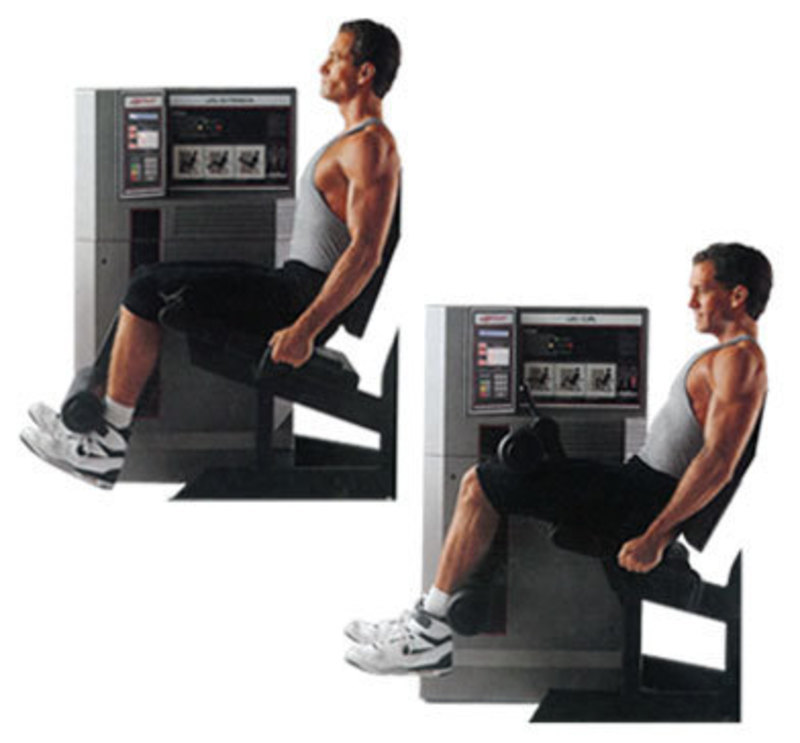 Life fitness circuit strength system 6l