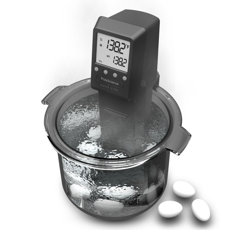 Three-quarters front view of the PolyScience: Sous Vide Professional cooking eggs